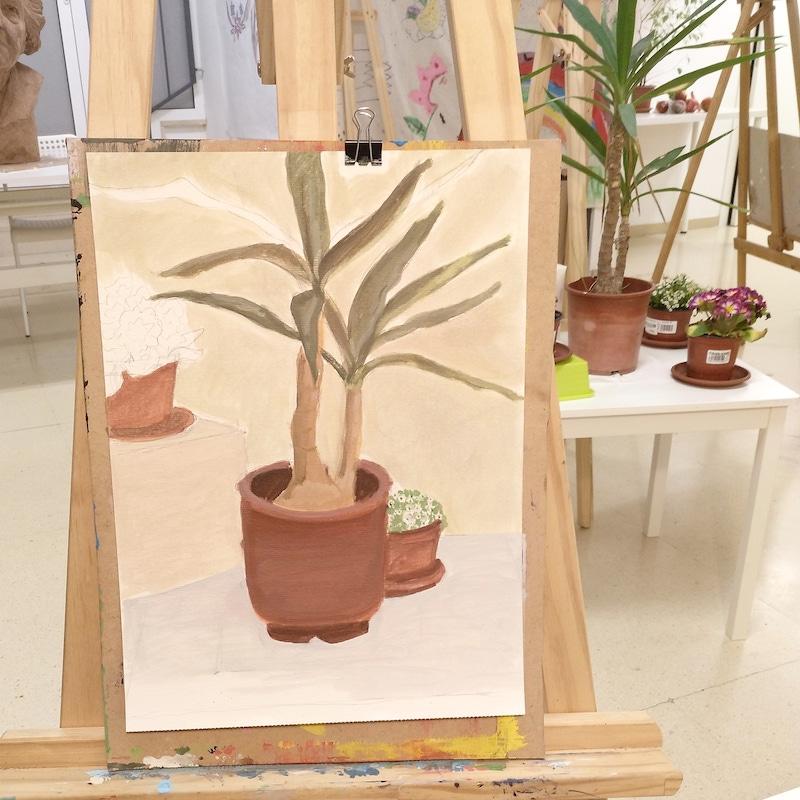 bodegon plantas